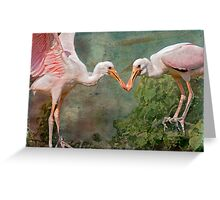 Roseate Spoonbill Siblings in the Nest Greeting Card