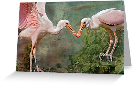 Roseate Spoonbill Siblings in the Nest by Bonnie T.  Barry