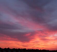 Nature  sky by Monte Roberts