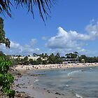 Noosa by TheaShutterbug