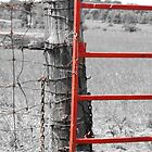 The Farm Gate by Heather Crough