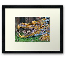 Age of Dragons Framed Print