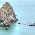 On the Rocks - San Francisco California by Gregory Ballos | gregoryballosphoto.com
