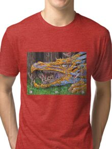 Age of Dragons Tri-blend T-Shirt