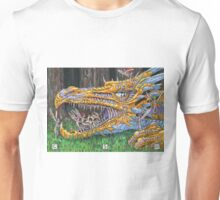 Age of Dragons Unisex T-Shirt