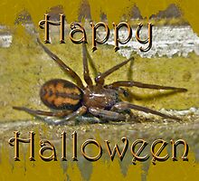 Happy Halloween Spider Greeting Card by MotherNature