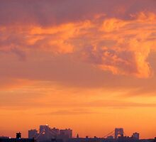 Firey sunset in New York City  by Alberto  DeJesus