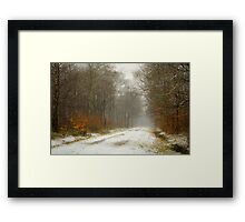 Mist and snow Framed Print