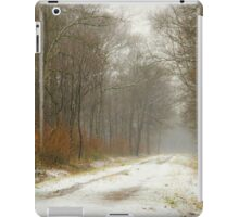 Mist and snow iPad Case/Skin