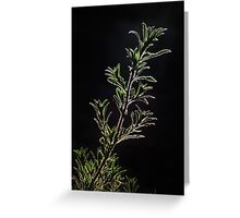 Isolation In Green Greeting Card