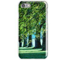 Sunlit Treeline iPhone Case/Skin
