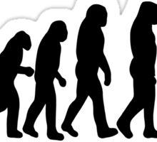 Female Photographer Evolution T-Shirt Sticker