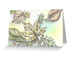 Norwegian Wood Fall Leaves Greeting Card