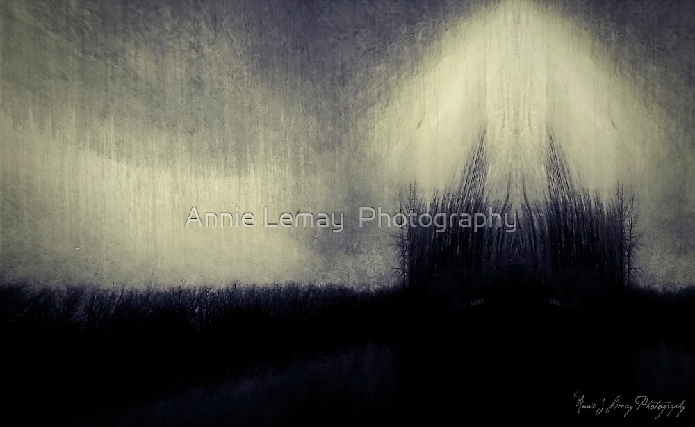 Within the Darkness by Annie Lemay  Photography