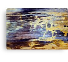 Wood Grain Stains 2 Canvas Print