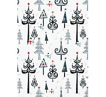 Christmas Tree Forest Photographic Print