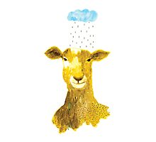The Goat and the Rain Photographic Print