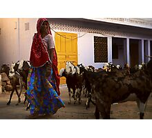 the goat herder Photographic Print