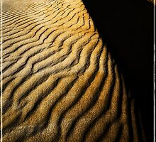 The Sand Dune by David J Baster