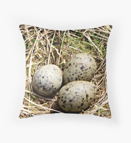 HERRING GULL EGGS . Throw Pillow