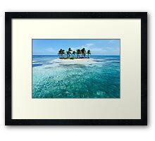 Fourteen Palms Framed Print