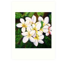 Frangipanis for Chrissy Art Print