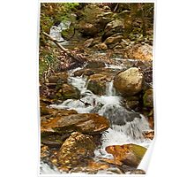 A rocky creek in the forest Poster
