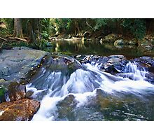 cedar creek  ... Photographic Print