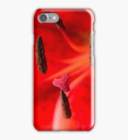 F Squadron iPhone Case/Skin