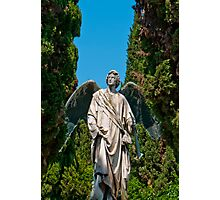 Marble and bronze angel Photographic Print