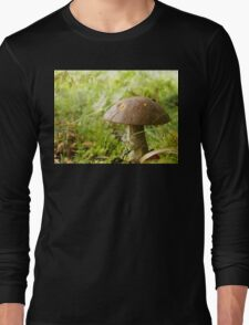 I'll meet you at the toadstool... Long Sleeve T-Shirt