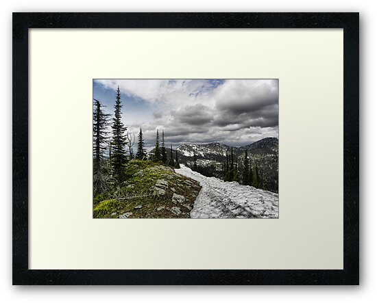 Montana Summer by rocamiadesign