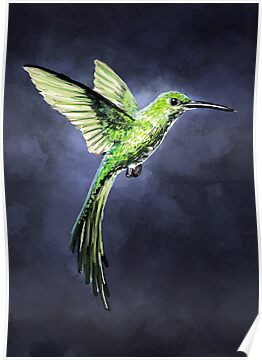 Green Hummingbird by freeminds
