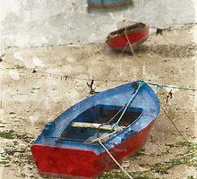 Barcas de Carril by rentedochan