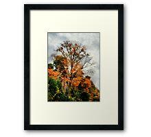 Sketchy Sky Framed Print