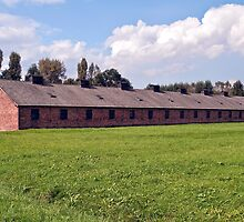 Auschwitz Birkenau concentration camp. by FER737NG