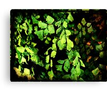 Leaves My Heart Canvas Print