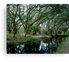 Parker Slough #4. Canvas Print