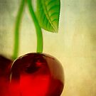 Vintage Cherries by Annie Lemay  Photography