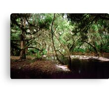 Parker Slough #6. Canvas Print