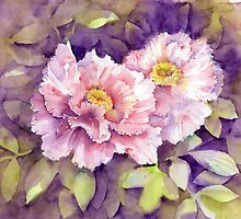 peonies by Tania Richard