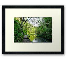 The Splendour of Dove Valley  Framed Print