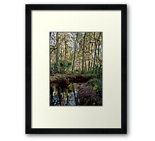Parker Slough #7. Framed Print