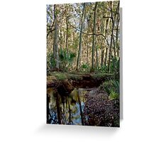 Parker Slough #7. Greeting Card