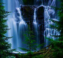 Lower Proxy Falls by Chris Ferrell