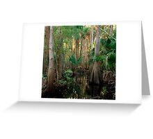 Bull Creek Swamp #2. Greeting Card