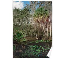 Joshua Creek. Seminole Ranch.  Poster