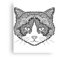 Snowshoe Cat Canvas Print