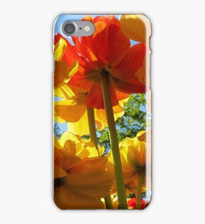 Tulips 8 iPhone Case/Skin