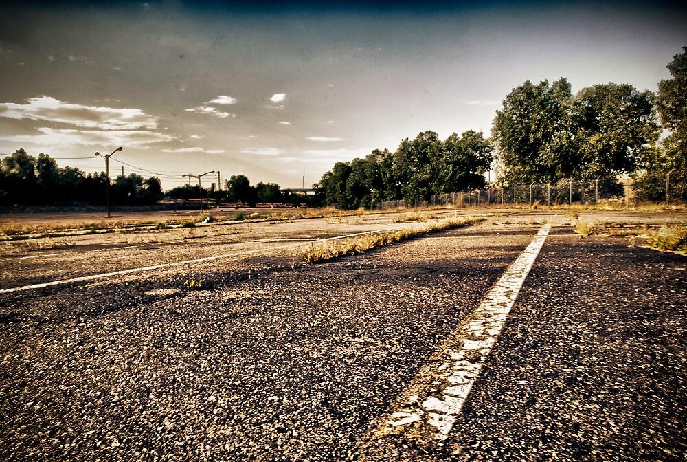 Wasteland 2 by Adam Northam
